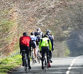 Cyclists out on the road